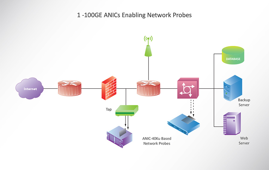 1 - 100GE ANICs Enabling Network Probes