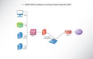 1 - 100GE ANICs Enabling In-Line Deep Packet Inspection